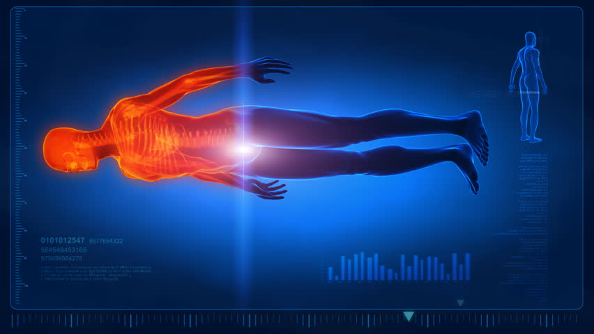 Human scan in loop 1- whole body Royalty-Free Stock Footage #741697