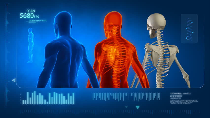 Human body scan with skeleton Royalty-Free Stock Footage #742651