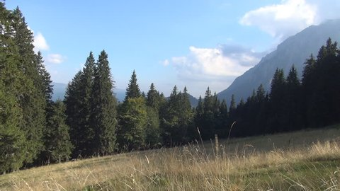 Mountain landscape in a summer sunny day.