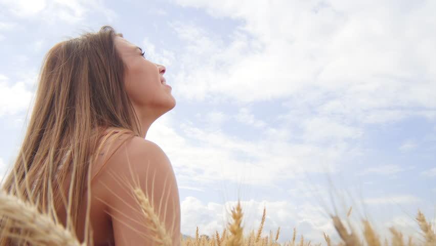Beautiful Brunette Sitting in a Wheat Field   Shutterstock HD Video #7656988