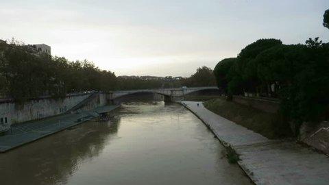 flock of starling over Tiber river in Rome