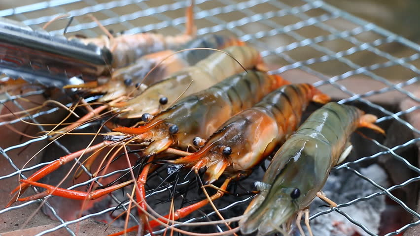 Close up shrimp grilling on the stove   Shutterstock HD Video #8055670
