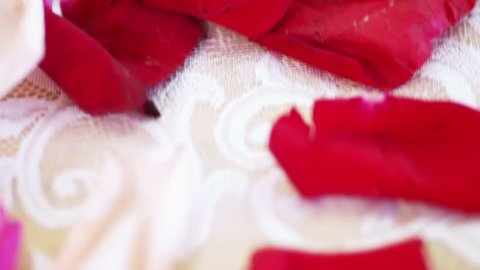 Flower petals lying on table