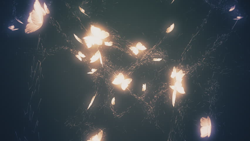 Magical Glowing Butterflies. Blue Tint. Stock Footage ...