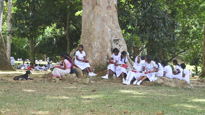KANDY, SRI LANKA - FEBRUARY 2014: Tracking Shot Of Local