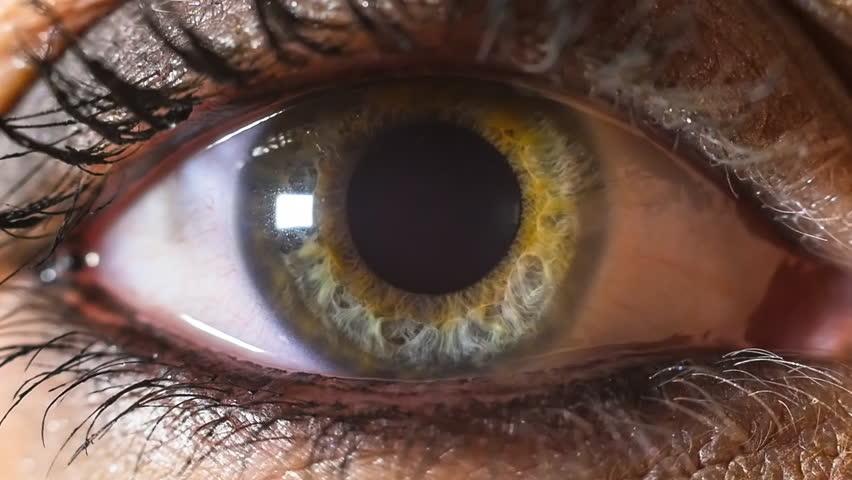 Iris pupil contracting slowmotion,female green make up eye