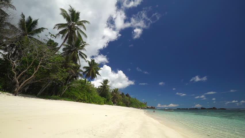 Sandy beach, palm trees and tropical lagoon    Shutterstock HD Video #8473468