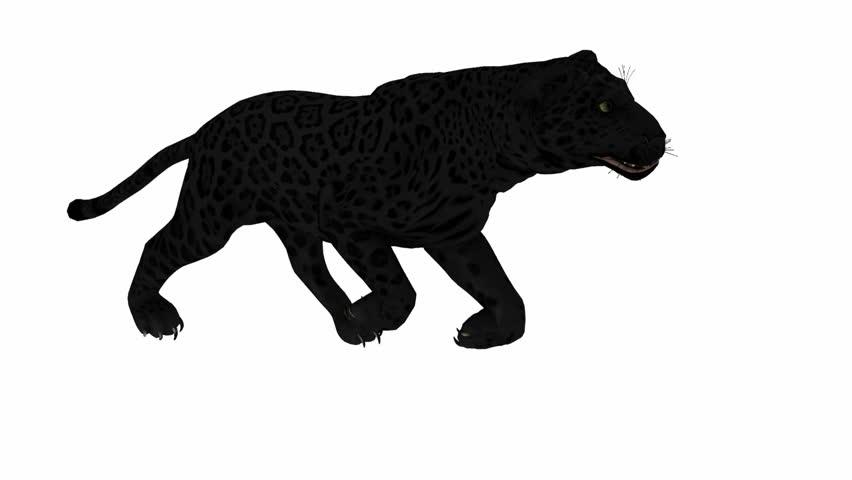 оснащен пластиковым бег пантеры гиф поможет тем