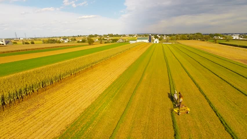 Overhead slow flyover of amish farmer working in field on horse drawn plow in Lancaster Pennsylvania USA.