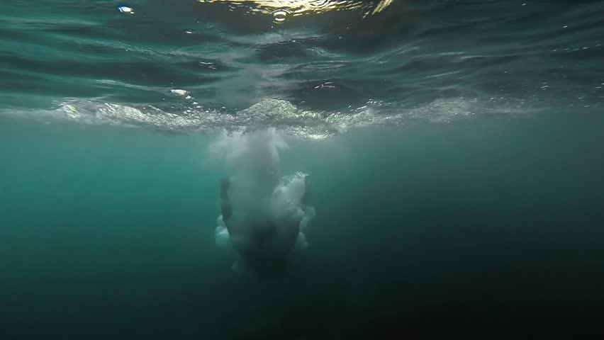 Summer Fun Man Jumping Off Cliffs Into Water Underwater Splash Sea Summer Vacation  Getaway Tropical Island View Sun Rays Shine Ocean Freedom Happiness Gopro HD