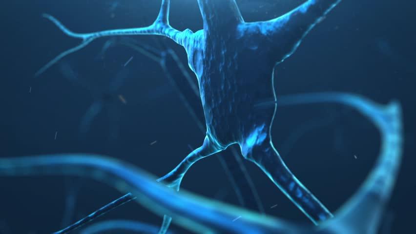 Neuron synapse | Shutterstock HD Video #8797711