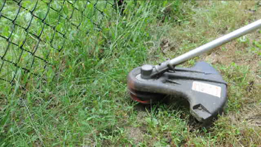 Weed cutting whacker machine in use on grass with sound | Shutterstock HD Video #880957