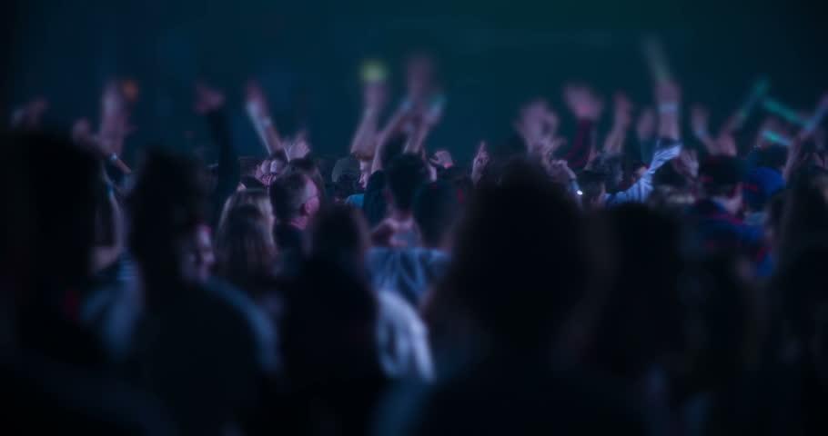 Party Crowd Slomotion | Shutterstock HD Video #8887003