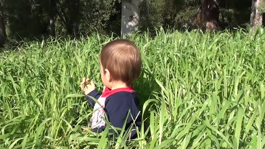 Baby plays with and tastes grass  | Shutterstock HD Video #8980816