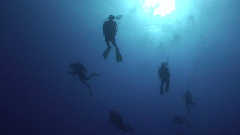 Silhouette shot of a group of scuba divers in blue water