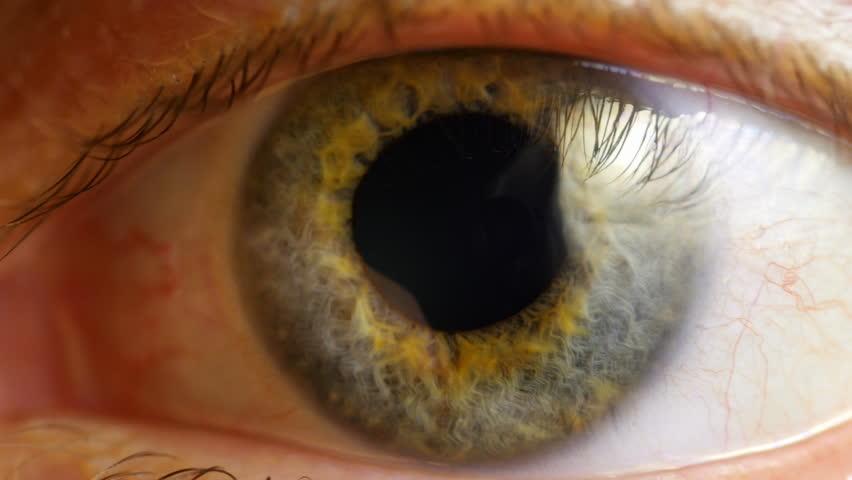 Extreme close up human eye iris in 4K UHD video. Human eye iris contracting. Extreme close up. 4K UHD 2160p footage. | Shutterstock HD Video #9215348