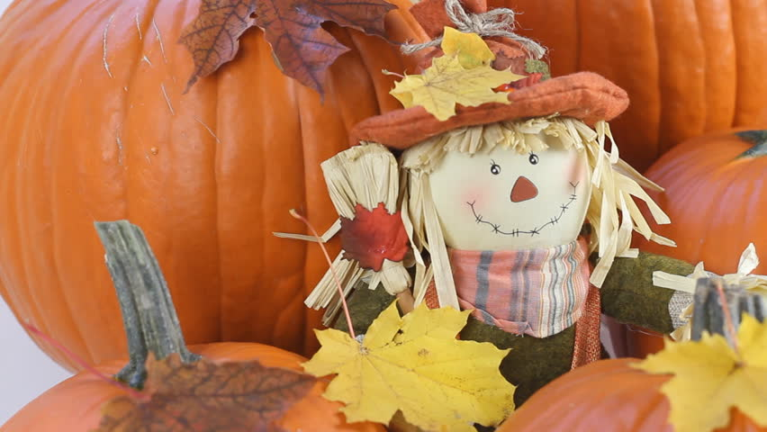 Scarecrow Decoration Placed With Pumpkins For A Halloween And Thanksgiving Display