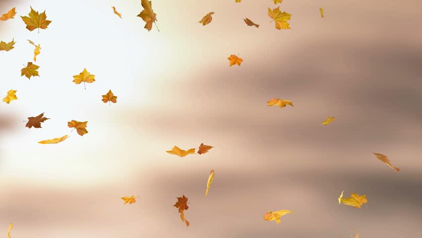 падают листья картинки для презентации