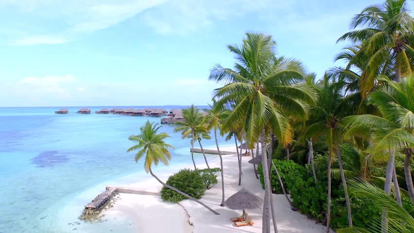 AERIAL: Exotic white sand beaches, palm trees and over-water villas