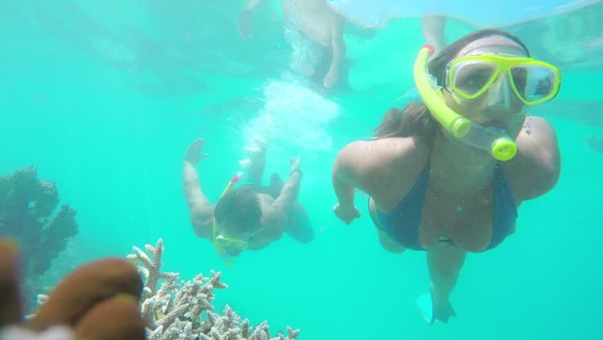 UNDERWATER: Divers snorkeling between big exotic fish on the reef
