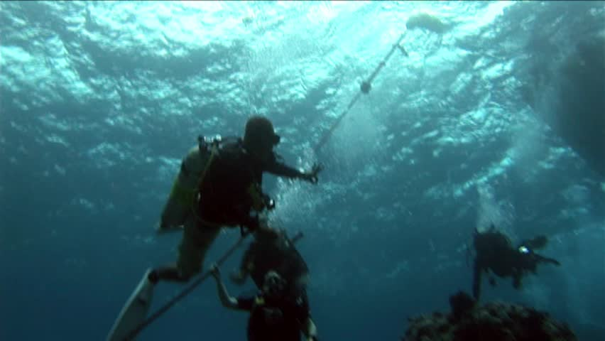 BLUE CORNER, PALAU - MAY 22, 2012: Tourist Deep Sea Diving at Blue Corner off the coast of the Island of Palau in the South Pacific  | Shutterstock HD Video #9536483