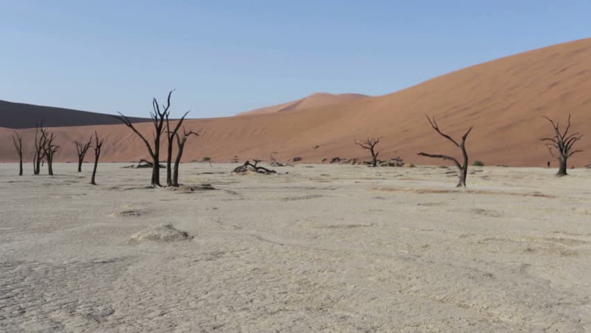 Beautiful sunrise landscape of hidden Dead Vlei in Namib desert with blue sky, this is best place in Namibia | Shutterstock HD Video #9536759