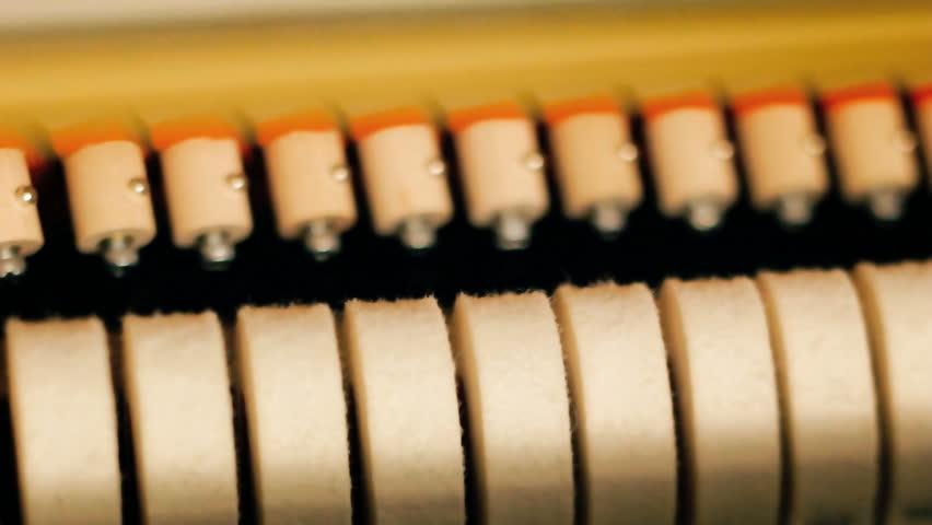 Inside of piano keys closeup, loop