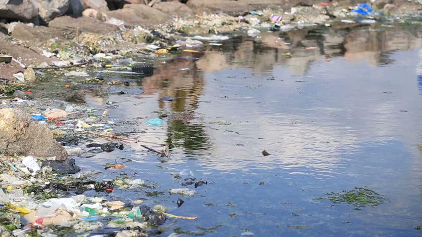 Water pollution | Shutterstock HD Video #9740711