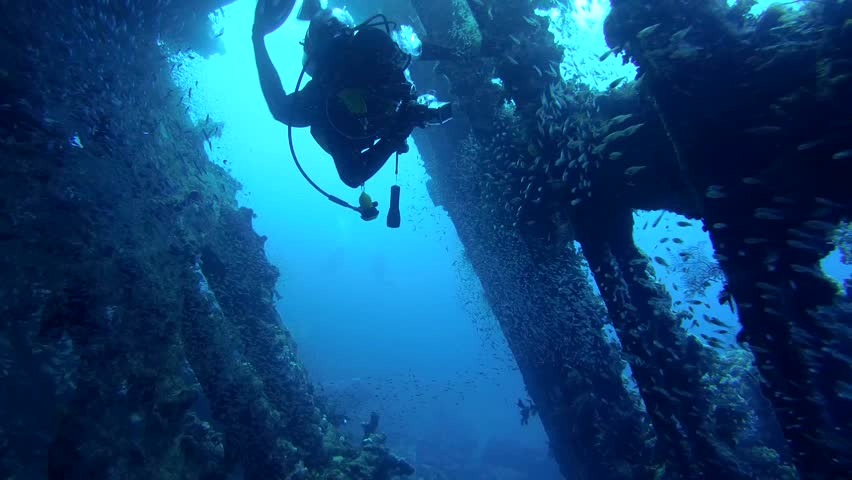 STRAIT OF GUBAL, RED SEA, EGYPT - OCTOBER, 2014: A diver swims inside wrecked ship SS Carnatic, Red Sea, Egypt   | Shutterstock HD Video #9895349