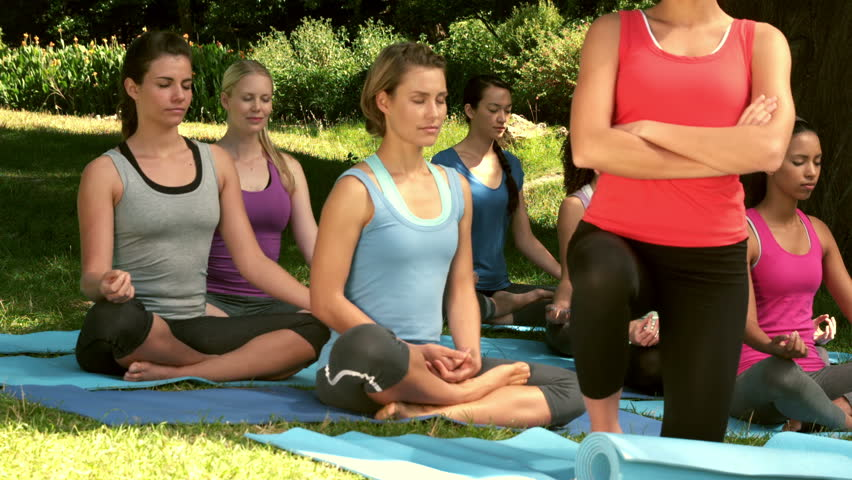 Slow motion of fitness multi-ethnic group doing yoga in park on a sunny day | Shutterstock HD Video #9909899