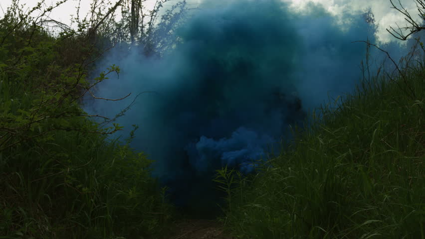 Modern soldiers moving through a blue smokescreen in a forest | Shutterstock HD Video #9979385